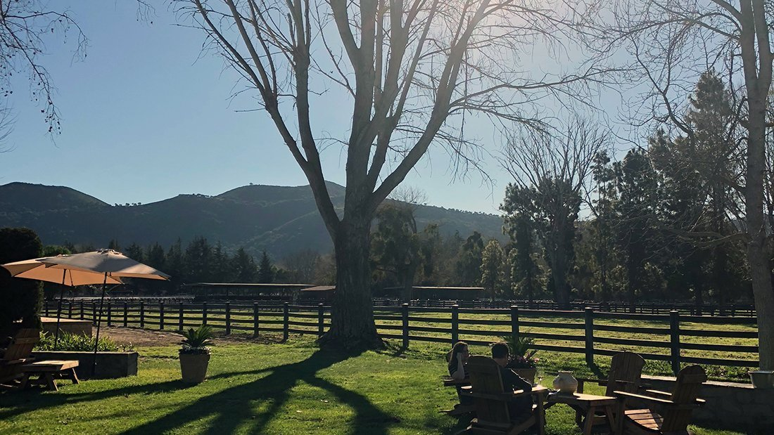 A private horse ranch and vineyard for private groups to taste wine at.