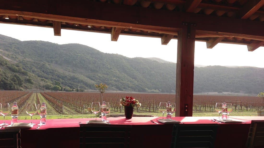 A beautiful private lunch, overlooking the vineyard, set up at a winery.