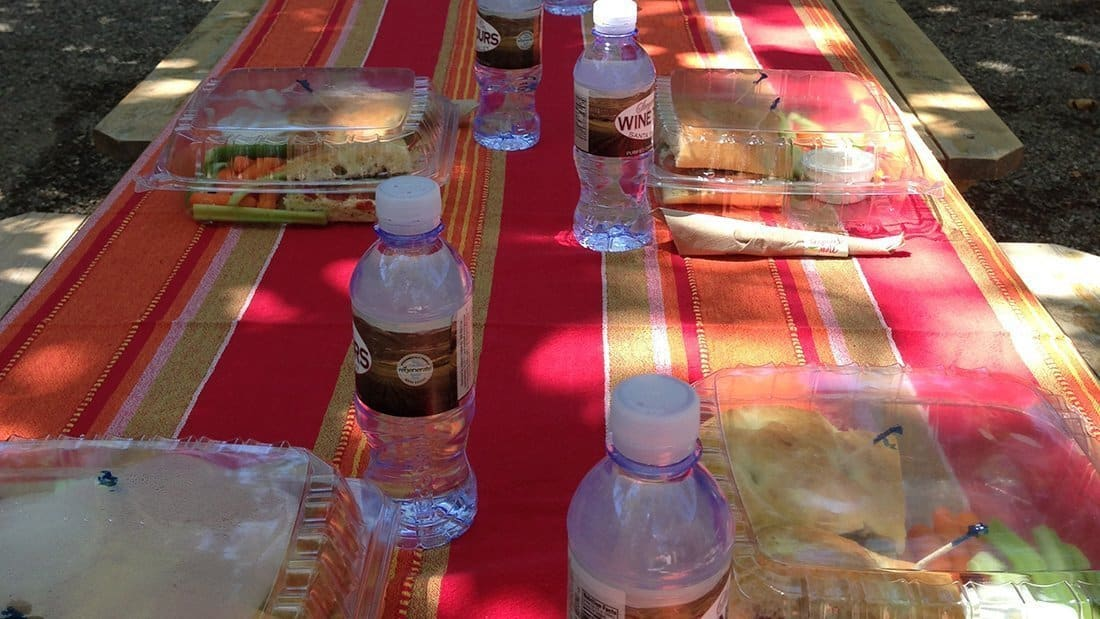 A tablecloth and lunches set outside on a picnic table.